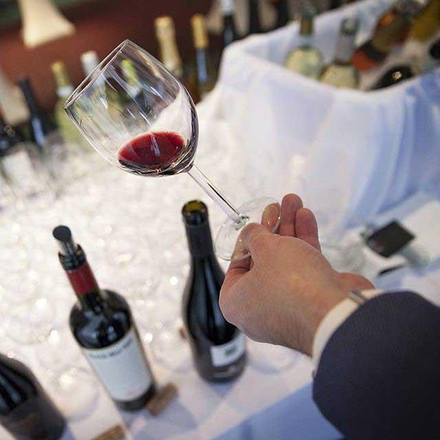 instagram wine expert
