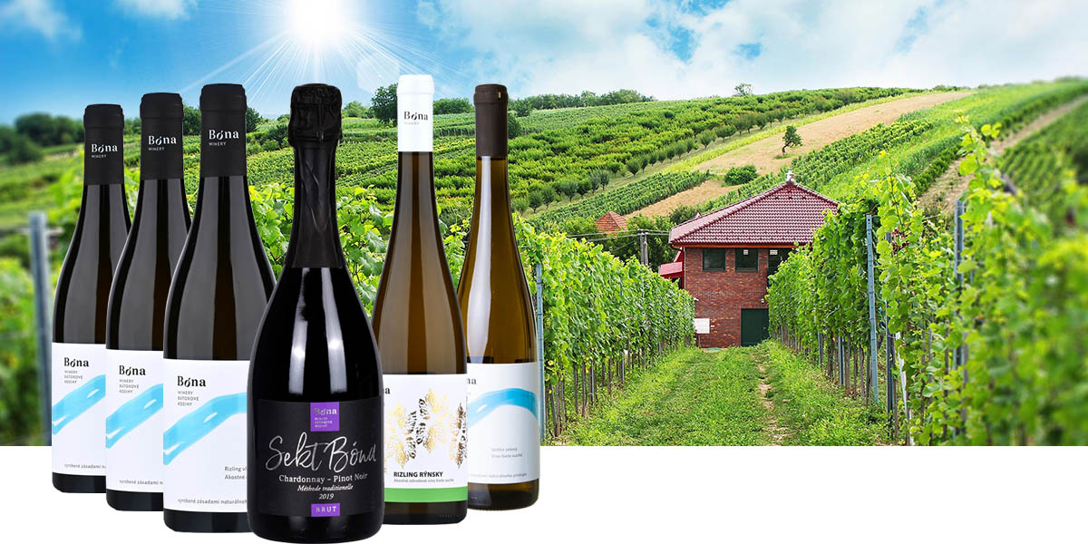 bona winery slovenske vina