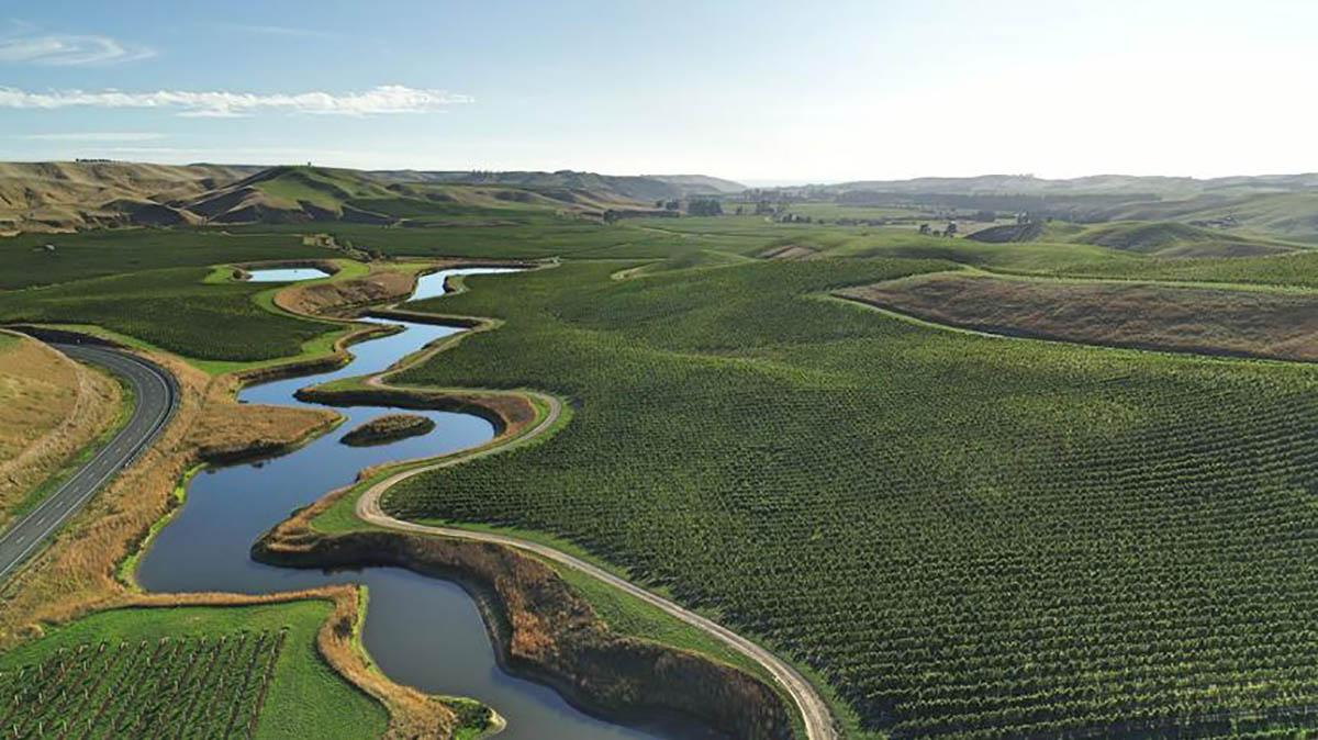 rapaura springs sauvignon vino novy zeland
