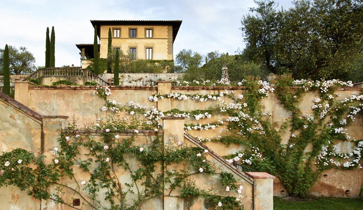 Sting winery il palagio toskanske vino